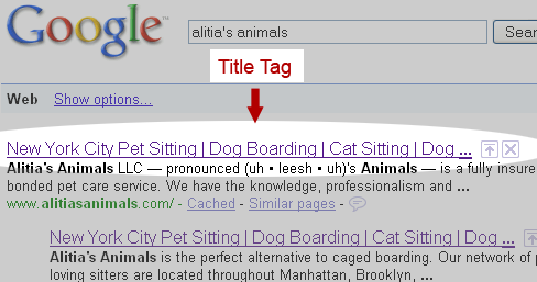 title tag example