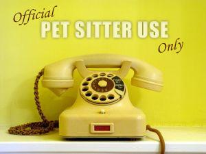 pet-sitter-phone