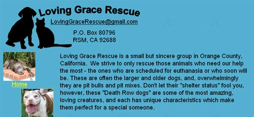 2-loving-grace