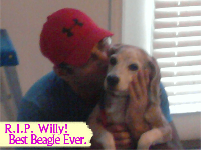 Willy. Best Beagle Ever.