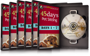 how to pet sit in 45 days