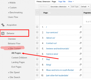 Google Analytics Screenshot All Pages
