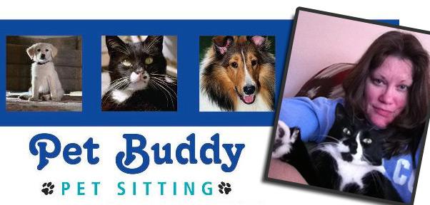 Pet Buddy Banner