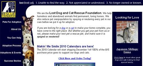 5-lost-dog