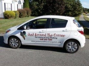 using car wrap for marketing